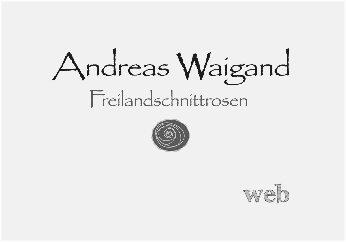 Homepage Andreas Waigand